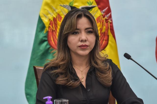 Viceministra de Comunicación denunció ante el ALB la vulneración de  derechos durante el Gobierno de Áñez   Oxígeno Digital